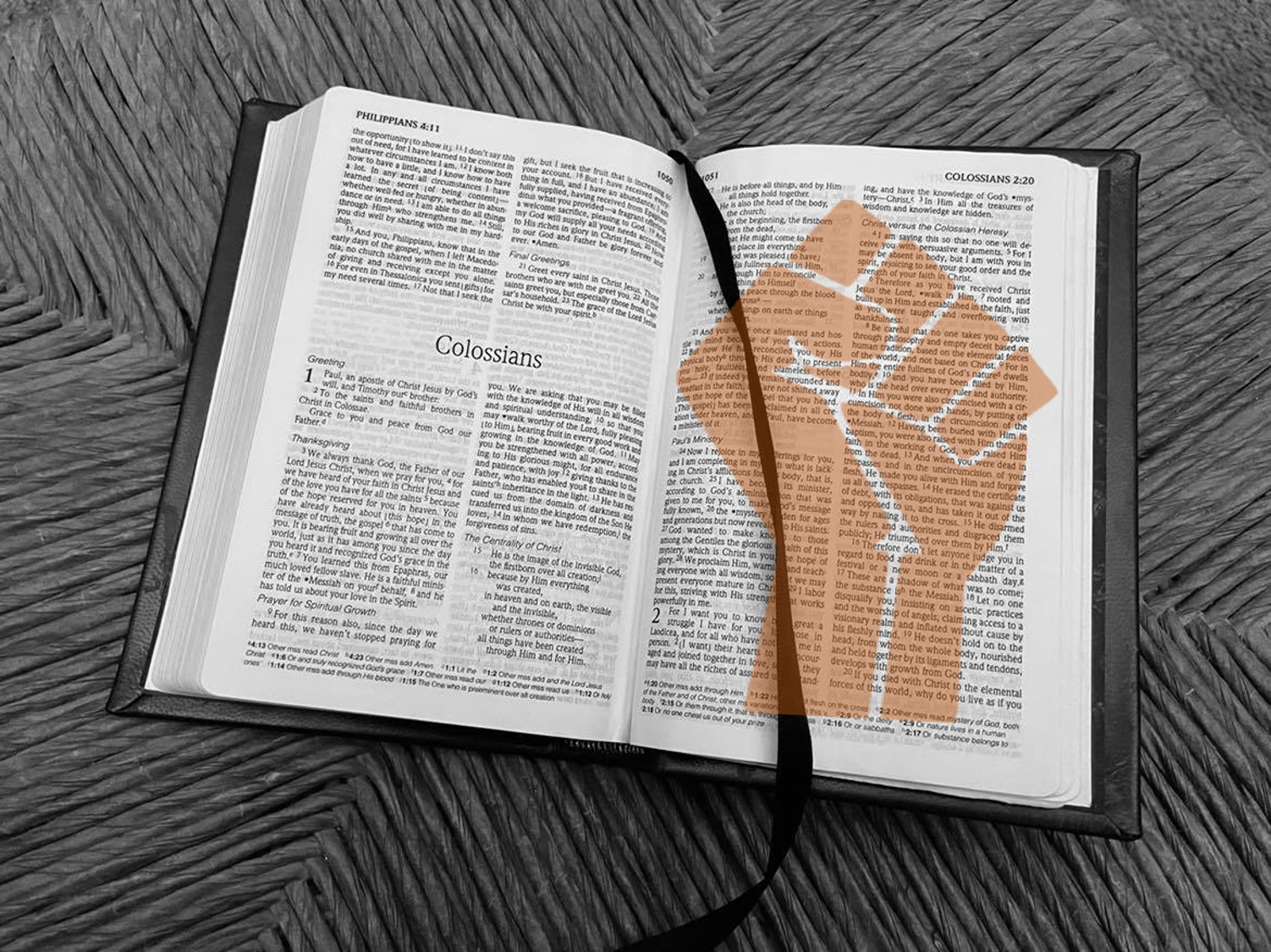 Holy Bible and Marxist Fist